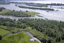 Island of Dordrecht